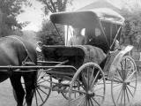 <p>Ellen G. White in a carriage with Sara McEnterfer circa 1910.<br /><br /><br /></p>
