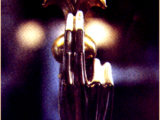 <p>A fleur-de-lis held by a hand on exhibit in a Roman Catholic Church. <br /><br /></p>