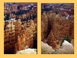 "<p>Beautiful erosional features in Bryce Canyon. This is an example of deep channeling by rapid washout and subsequent weathering over time.</p> <p>Watch our series <a href=""https://amazingdiscoveries.tv/c/10/Genesis_Conflict_-_English/"">Genesis Conflict on ADtv</a> for more information. </p>"