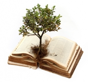 tree growing from Bible