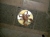 <p>Symbols of the Zodiac are found on the floor of the Vatican. </p>