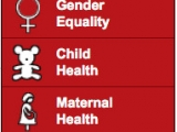 <p>The United Nations' Millennium Development Goals. </p>