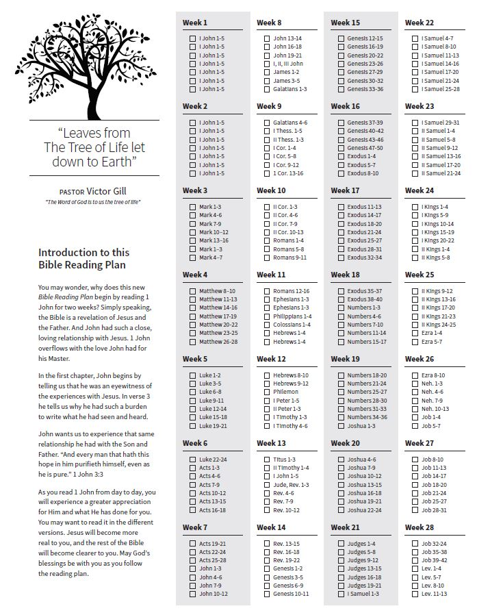 Galerry printable read through the bible plan