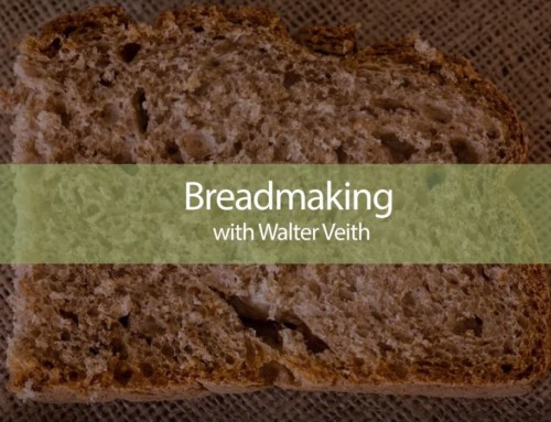 Quick Rye Bread with Walter Veith